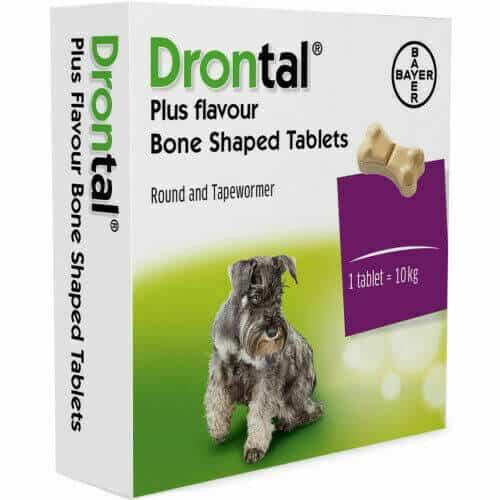 using drontal plus for giardia