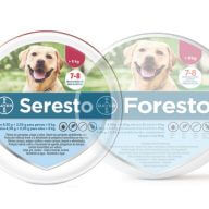 seresto small collar bayer flea and tick price online
