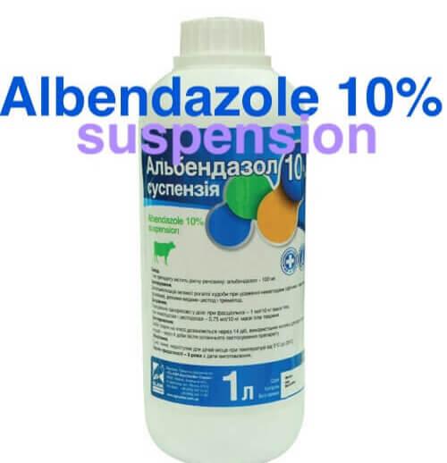 albendazole suspension liquid zentel for infants sale buy online