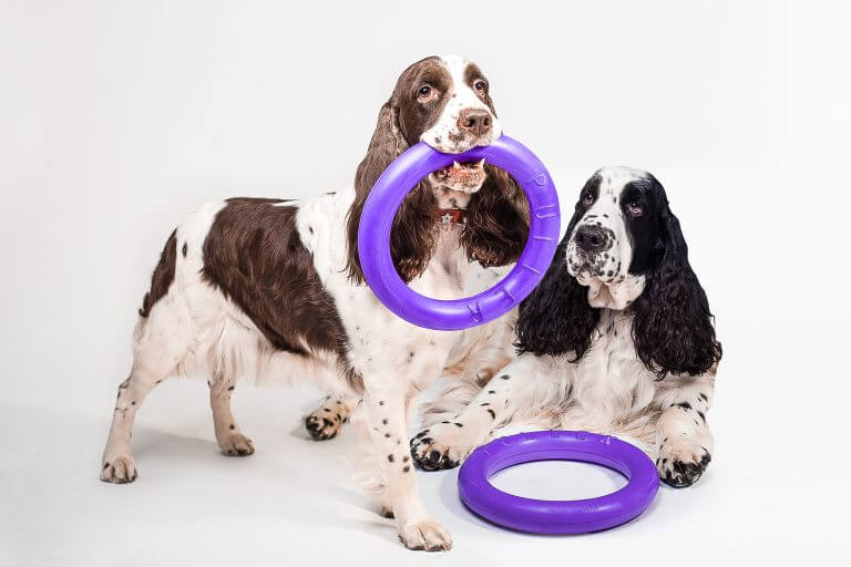 puller collar for dogs for sale buy online