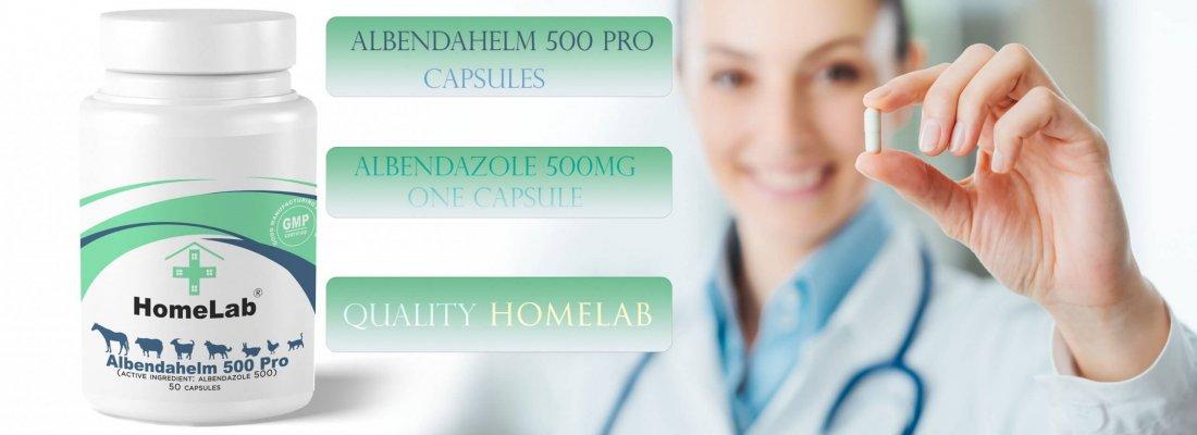 Alnendahelm 500mg capsules Albendazole pet meds online