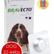 bravecto price pet medications