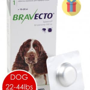 bravecto price pet medications