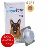 bravecto price online pet pharmacy