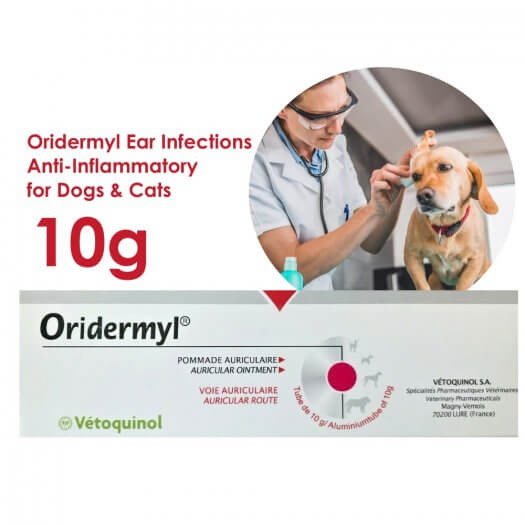 Oridermyl Ear Infections