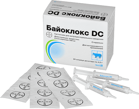 Cloxacillin by Bayer