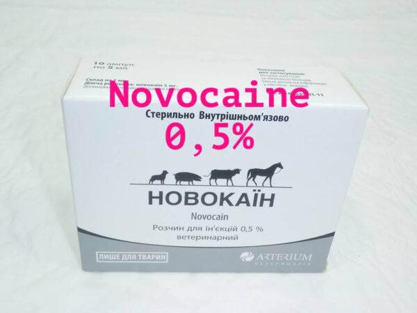 novocaine PROCAINE ATC: QN01