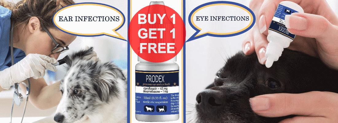 PRODEX - ciprodex drops for ears 250-250-online shop HOMELAB sale