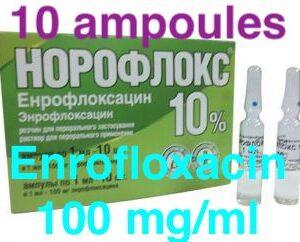 noroflox 10% Enrofloxacin