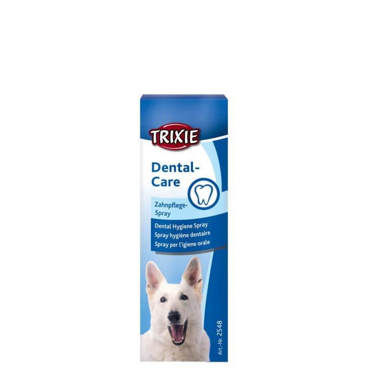 Dental Care for Dogs pet meds online homelabvet