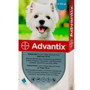 bayer advantix K9 II for Dogs | For Veterinary homelabvet