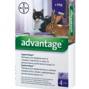 ADVANTAGE for DOGS and CATS BAYER imidacloprid online pet pharmacy PRICE