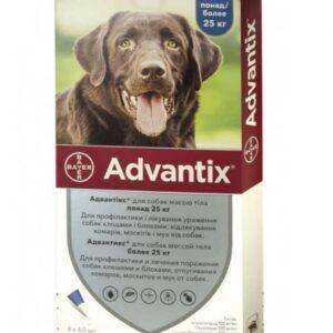 bayer advantix K9 II for Dogs | For Veterinary homelabvet price