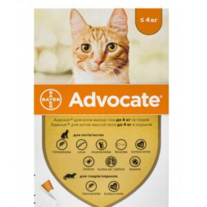 Bayer Advocate for CATS pet meds rx