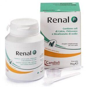Renal P