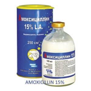 Gel Apichels for BEE - 1000g 2.2 lb