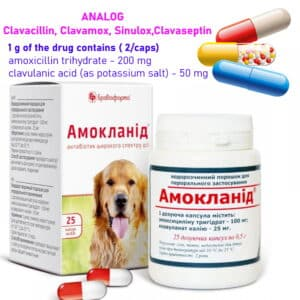 Clavacillin, Clavamox, Sinulox, Clavaseptin, amoxicillin